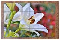 White Lily -  Tile Mural