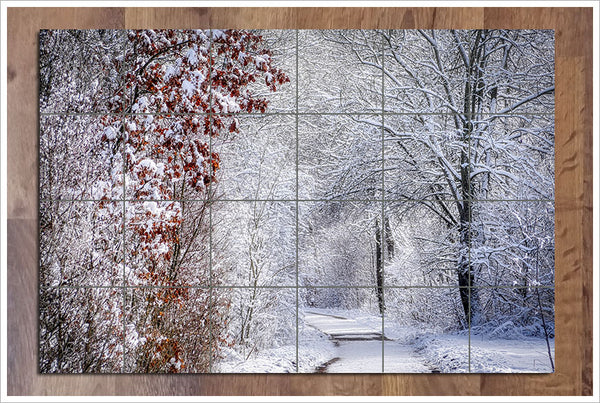 Winter Path -  Tile Mural