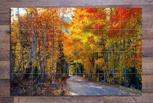 Autumn Road -  Tile Mural