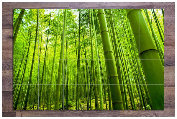 Bamboo Forest Ceramic Tile Mural