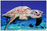 Sea Turtle and Coral -  Tile Mural