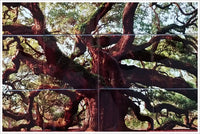 Elder Oak Tree - Ceramic Tile Mural