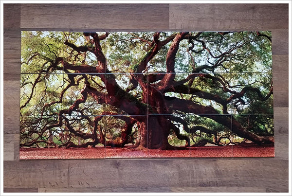 Elder Oak Tree -  Tile Mural