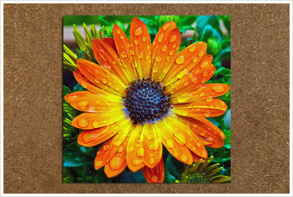 Orange & Yellow Flower -  Tile Accent