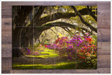 Oak Tree Azalea Pathway - Ceramic Tile Mural