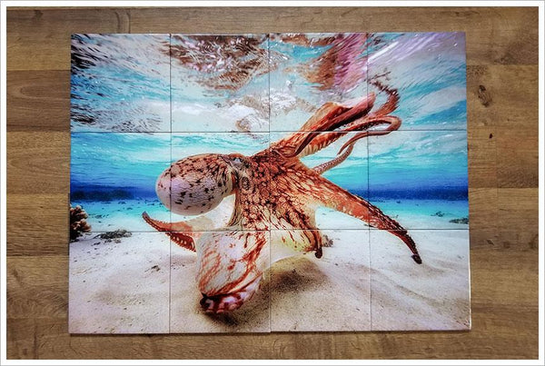 Ocean Octopus Ceramic Tile Mural