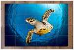 Sea Turtle Above -  Tile Mural