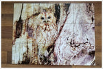 Tree Owl Ceramic Tile Map