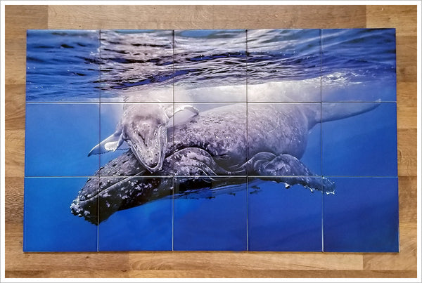 Whale and Calf -  Tile Mural