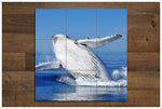 Whale Breach - Ceramic Tile Mural