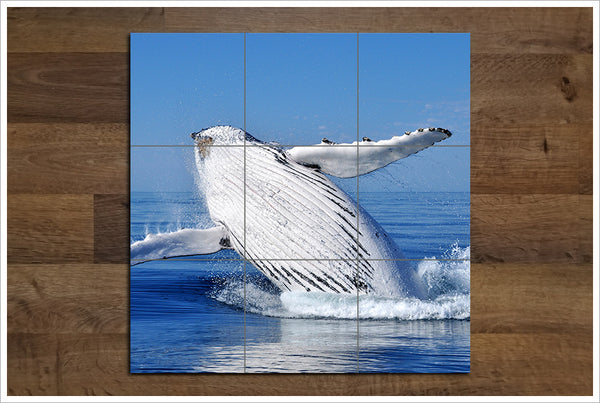 Whale Breach -  Tile Mural
