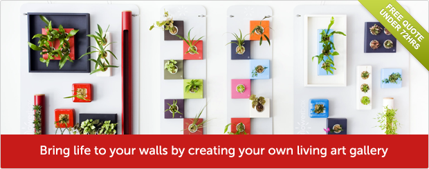 Bring life to your walls by creating your own living art gallery - Free quote under 72hrs