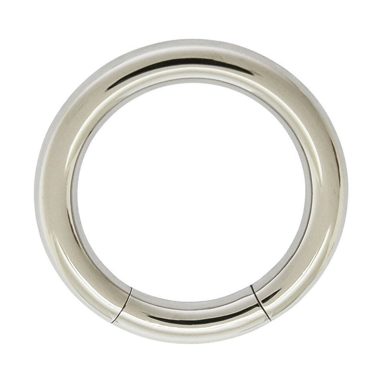 8g Stainless Steel Segment Ring