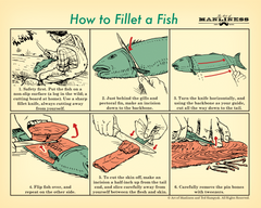 How to Filet a Fish Poster [PRINT ON DEMAND]