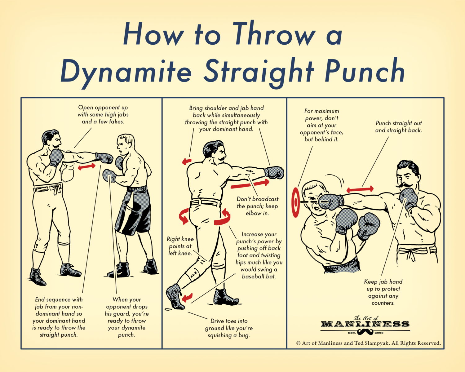 How to Throw a Dynamite Straight Punch Poster [PRINT ON DEMAND]
