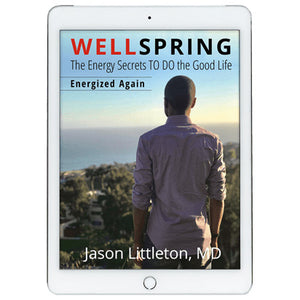 E-book: WellSpring - Energized Again, 2nd Edition