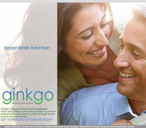 Ginkgo Biloba | 500 mg Extract Capsules | Supports Brain Health, Mental Alertness, Concentration and Focus | 30 Day Supply