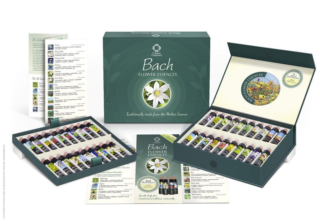 Bach Flower Remedy Set of 40 x 10ml Stock Essences. Boxed Practitioner Kit of Traditionally Made Remedies