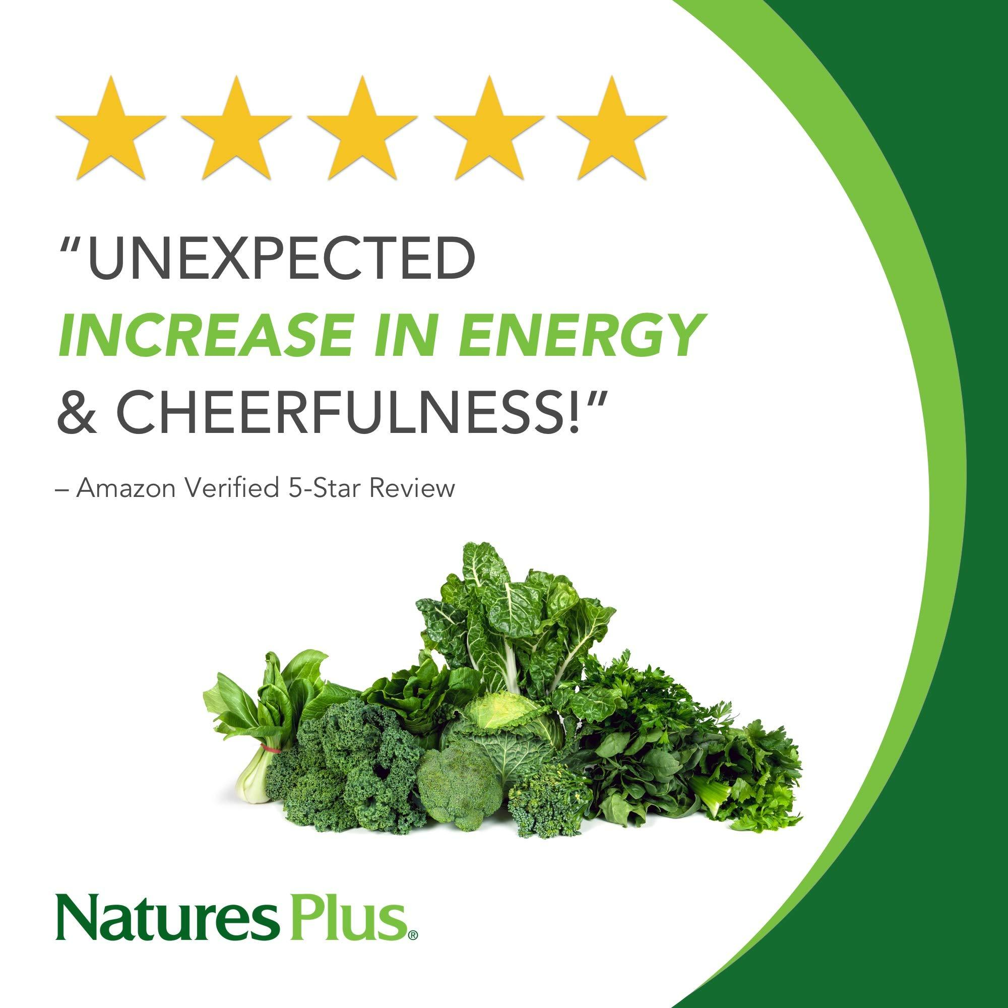 NaturesPlus Ultra Juice Green Powder - 1.32 lbs, Green Drink - Multinutrient Supplement, 20 Whole Green Foods & Global Algae- Non-GMO, Organic, Gluten-Free - 60 Servings 1.32 Pound