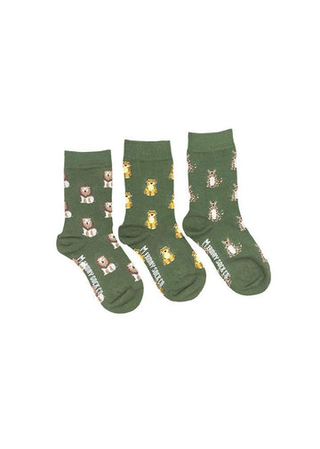 Lion, Tiger & Cheetah Sock Set Accessory Friday Sock Co.