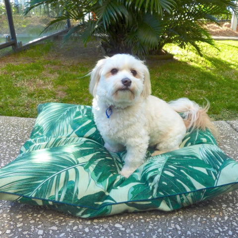 Indie ECO Pet Bed - Tropical Leaves