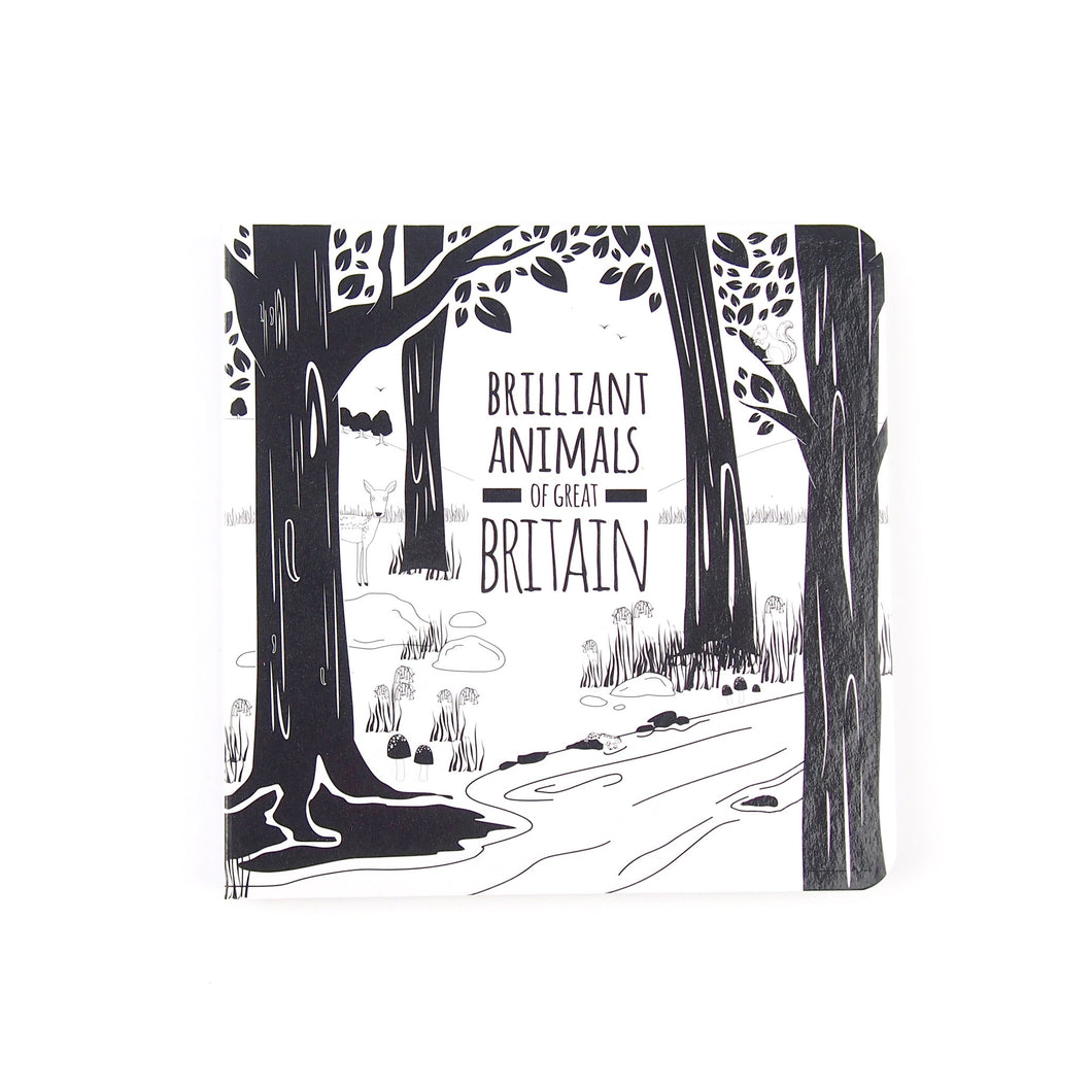 Brilliant Animals of Great Britain baby book