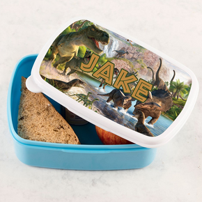 Dinosaur Scene Lunchbox Lunch Tub
