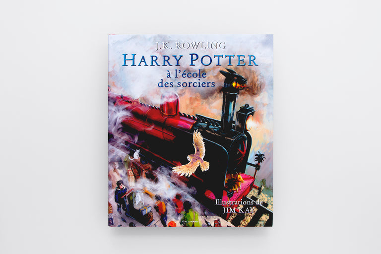 Harry Potter à l'école des sorciers (Version illustrée). Harry Potter and the Sorcerer's Stone (Illustrated Edition). Buys children's books in French. Olibrix online children's bookstore.