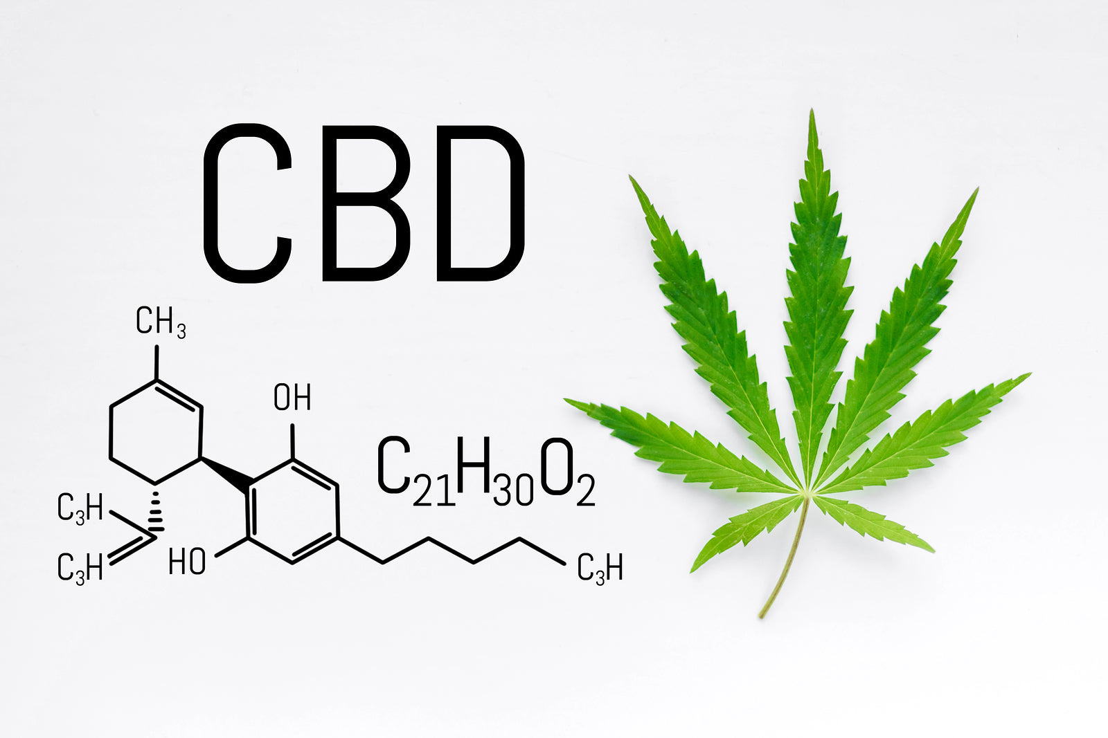 CBD nootropic effects