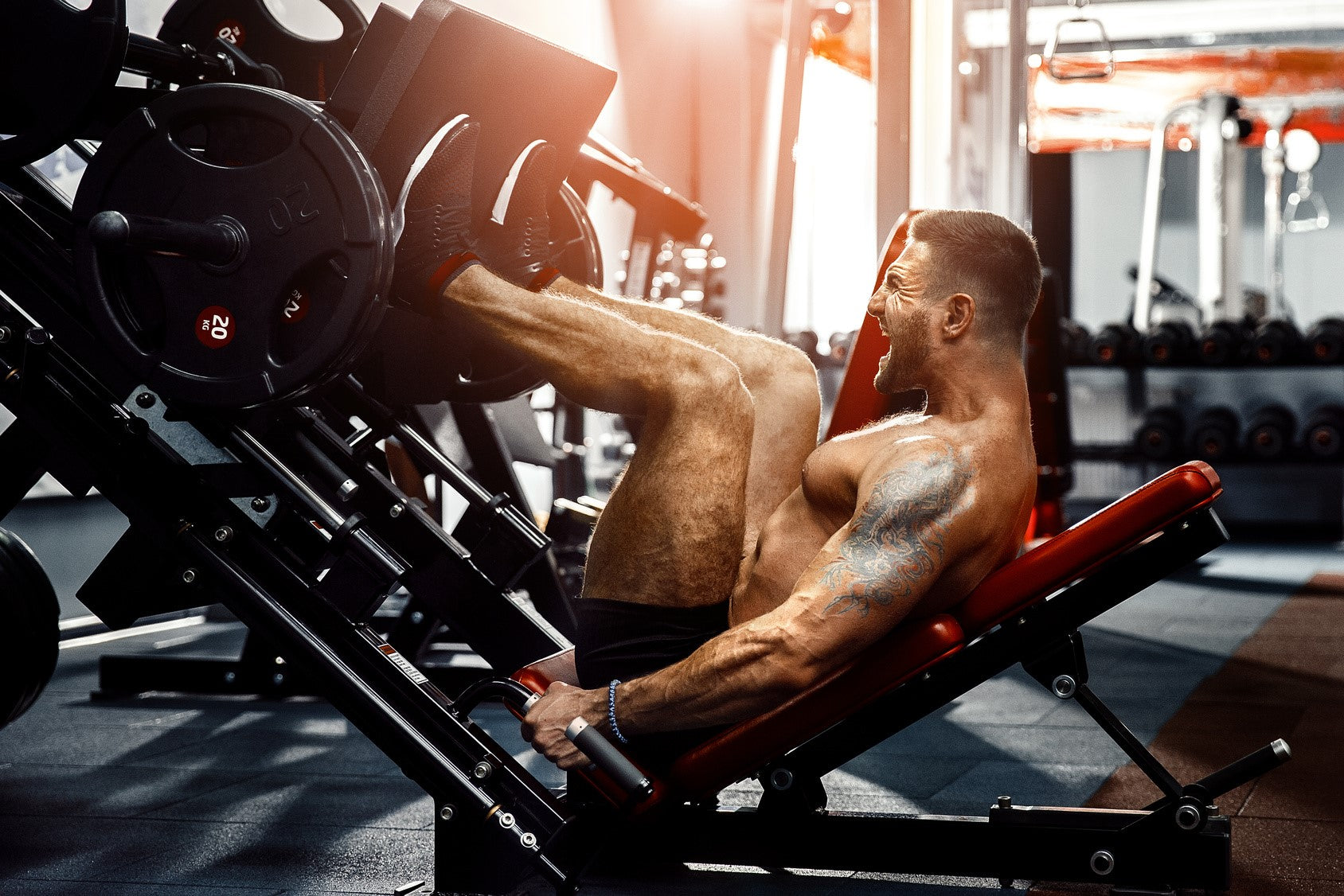 Nootropics for bodybuilding can help boost the concentration that is needed for success.