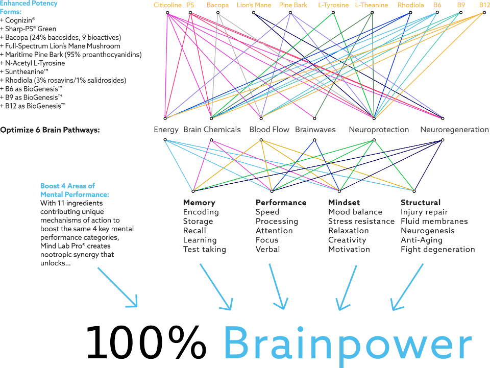 list of nootropics in mind lab pro and how they create 100 percent brainpower