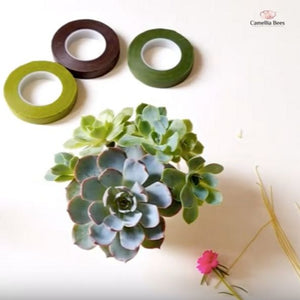 How To Use Floral Tape With Succulents-DIY Step By Step Easy Making