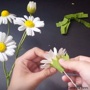 How to make Paper Chamomile daisy flower from crepe paper- DIY