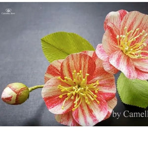 How To Make Paper Camellia Flower From Crepe Paper Step-By-Step