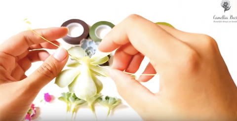 how-to-use-Floral-tape-with-succulents-easy-step-by-step