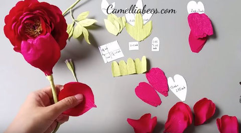 paper-peony-flower-template