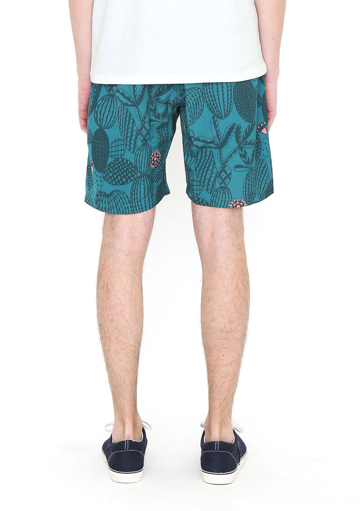 Multi Pattern Short Pants (Cactuses and flowers)