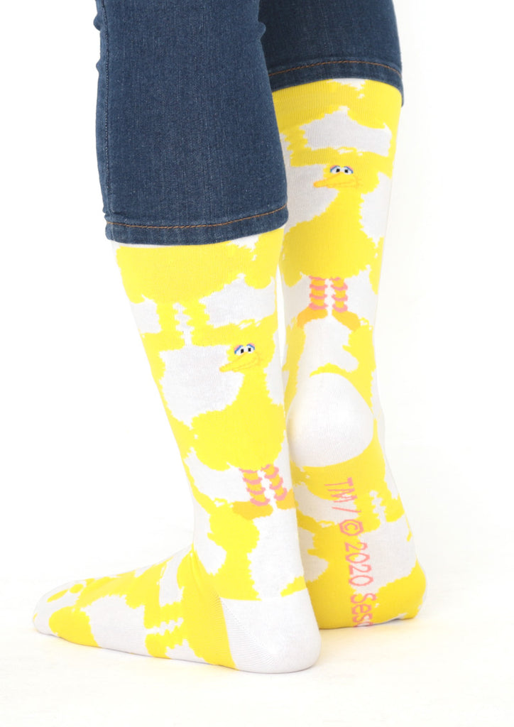 Sesame Street Long Socks (Sesame Street_Big Bird Pattern)