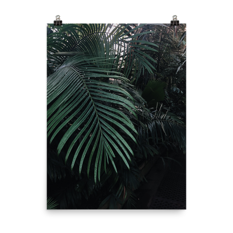 Grown tropical Poster