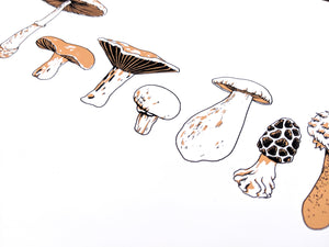 MUSHROOMS Row - Art Print