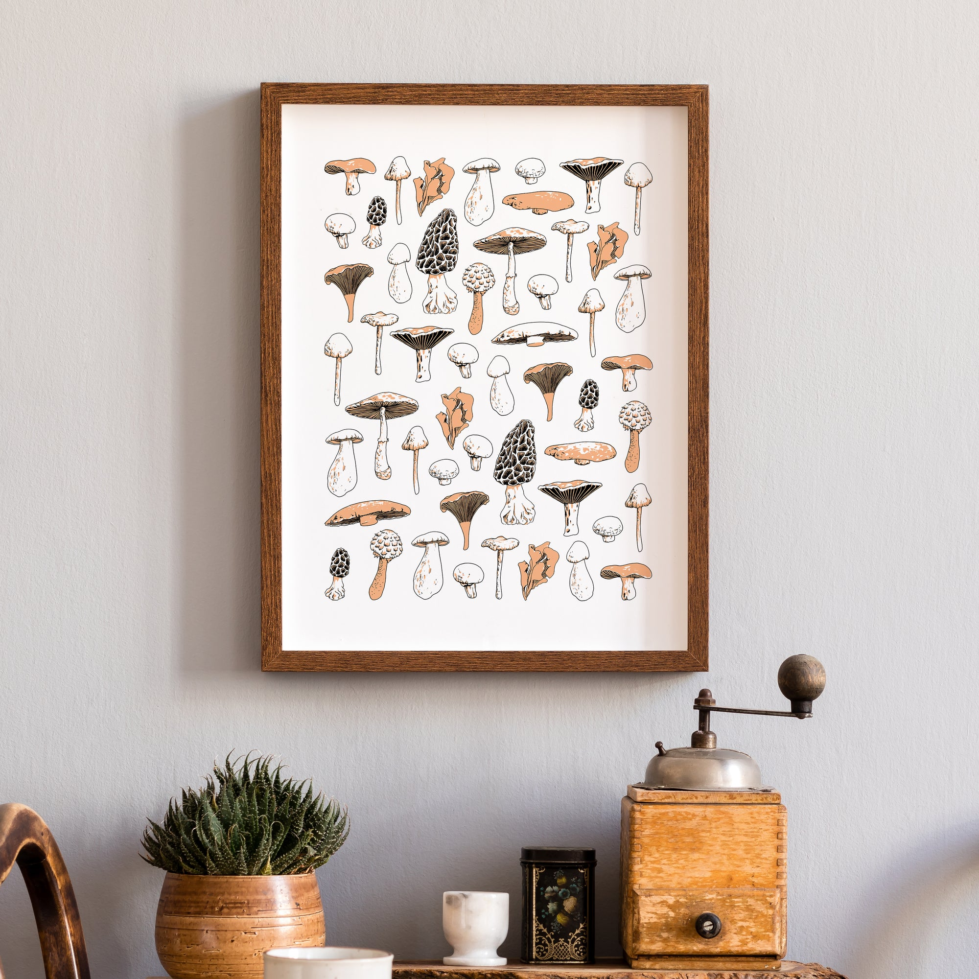 fungi mushroom types illustration art print