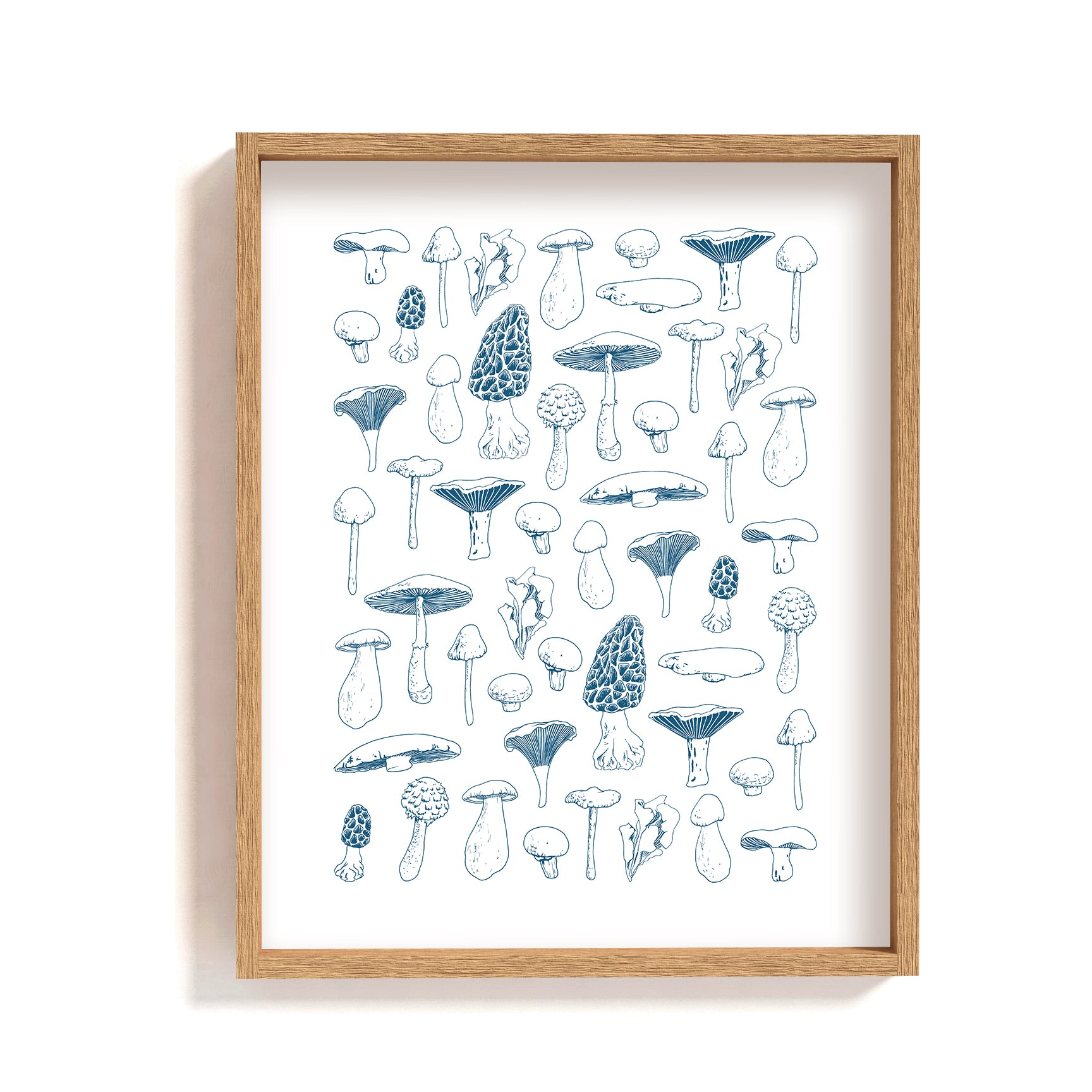 blue white mushroom types guide illustration print