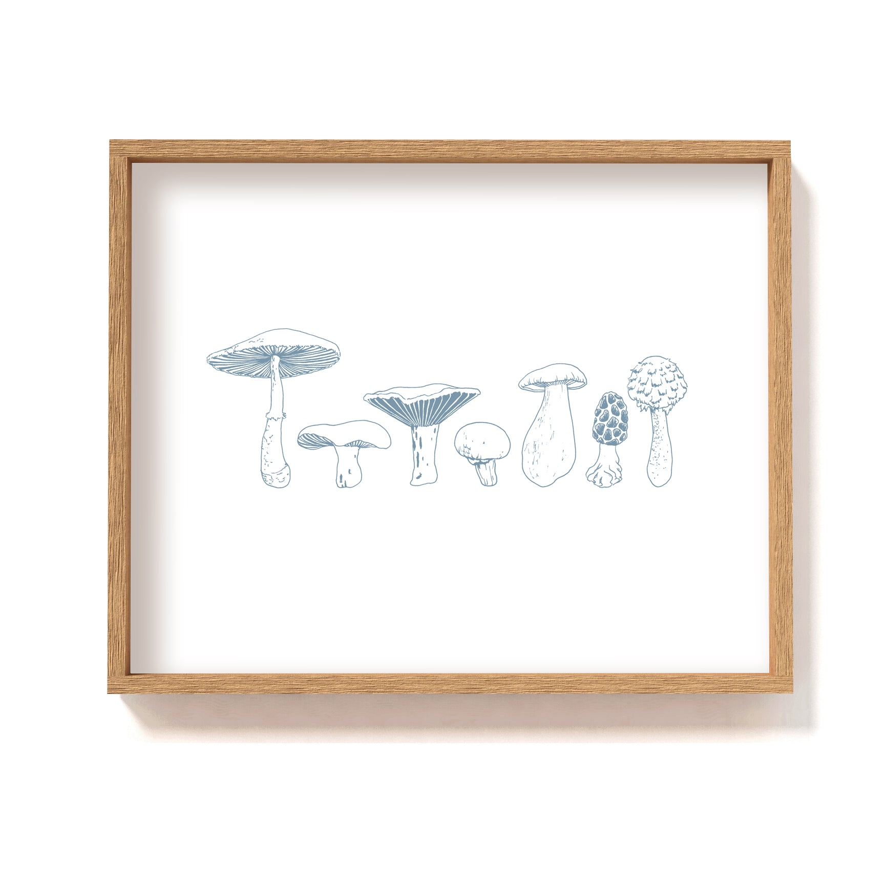 blue white illustration mushroom types art print