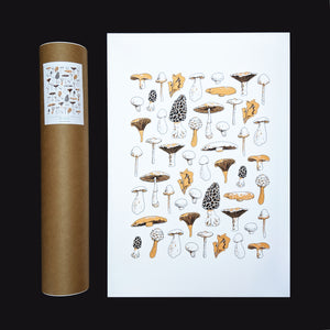 MUSHROOMS - Art Print