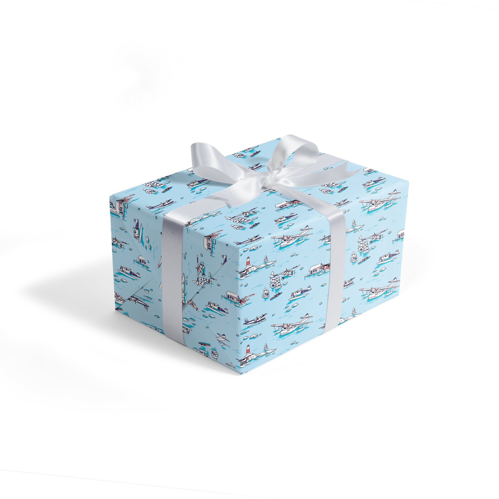 Winter water planes - wrapping paper