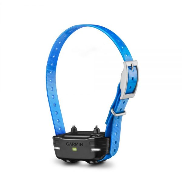 Garmin PT 10 Dog Device with Blue Collar