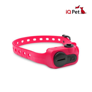 Dogtra IQ Pet No Bark Collar