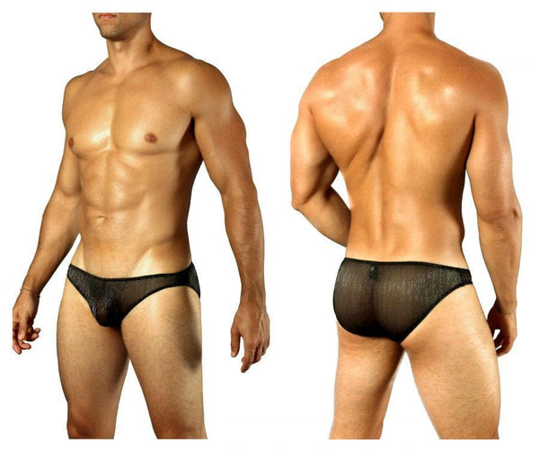 Doreanse 1301-BLK Shimmering Sheer Brief