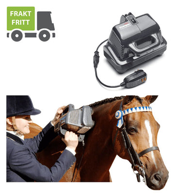 Thumper Massager Inc. - Thumper® Equine Pro -  Pakvis Health