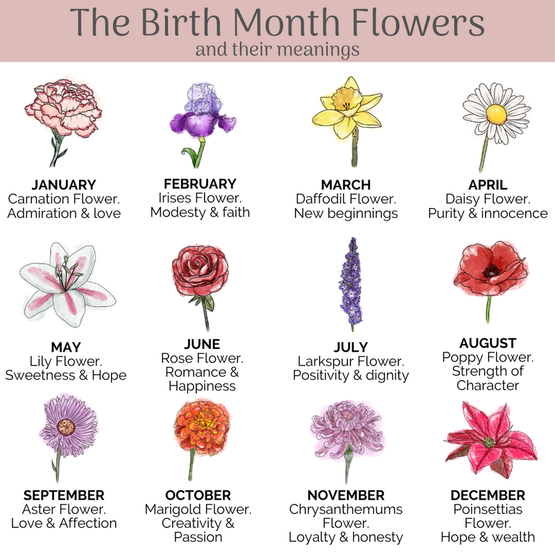 'Mother of Life' - Birth Flower Poster - Mae She Reign - Creative Studio